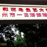 淘宝好去处——广州花鸟市场