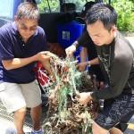 珊瑚周活动呼吁关注海洋永续