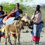 非洲的新太阳能勇士:马赛妇女