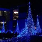 在东京看一场华丽的灯光秀