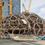 亚马逊公司盖树屋
