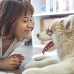 你会让狗舔你脸吗?