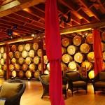 纳帕酒乡的收割季节:V. Sattui酒庄