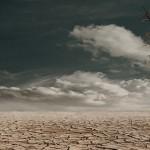近日高温与全球气候变迁无关