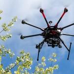 利用无人机保护野生动物