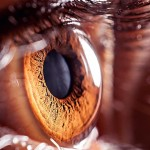 机器人也能成为眼科医生了