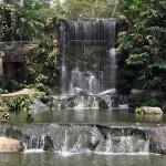 不能错过的吉隆坡飞禽公园