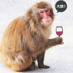 喝酒脸红是肝功能、酒量好?大误!