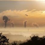 人为二氧化碳排放会减少谷物中的蛋白质