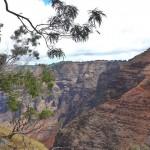夏威夷可爱岛的威美雅峡谷