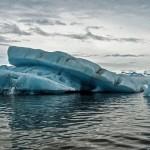 南极水温升1度 生物倍速增长