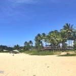 夏威夷绿意盎然的花园岛