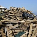 清扫台风过后的家园