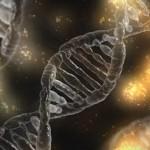 DNA可以移植吗?