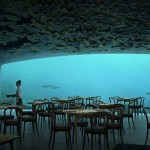 【To Do List】太浪漫了!在魔幻美景的海底餐厅 UNDER 里和情人共进烛光晚餐