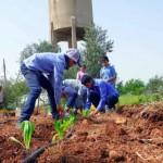 """叙利亚小学打造""""可以吃""""的游乐场,让在地菜园成为饥饿孩童的希望"""