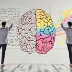 右脑和左脑有什么区别?