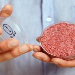 干细胞中可能会培育出肉吗?