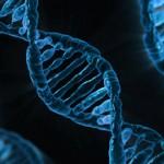 DNA的数字化,背后风险有多大?