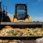 不可轻看的食物垃圾