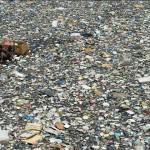 仅10条河流就包含了全球95%的海洋塑料