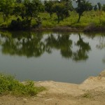 """让大自然帮忙储水!72 岁工程师奶奶建""""节约水坝"""",改善印度干旱困境"""