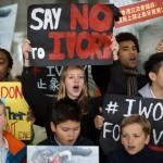 香港全面禁止象牙买卖