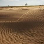 地球土地退化面积达75%