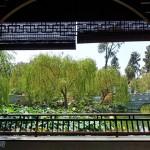 洛杉矶汉庭顿图书馆花园