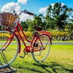自行车骑士的天堂 : 荷兰