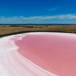 澳大利亚粉红湖之谜