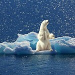 气候变迁下的投资策略