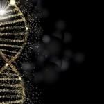 黄金也许能帮我们探索出新的癌细胞检测之路