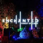 洛杉矶Descanso 花园迷幻圣诞灯展