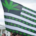 为何美国那麽多公民支持大麻合法化?