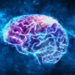 AI 已经可以从脑电波中直接译码词语