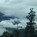 西藏朝圣之旅 (三)-鲁朗林海