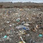 废弃物每年导致100百万人死亡