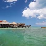 海中酒吧寻找酒保