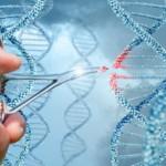基因饮食疗法