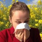 对抗过敏性鼻炎