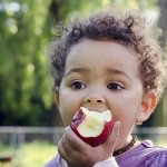 有机苹果比一般苹果有更多的有益菌