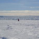 孤独的南极探险者,大脑正在萎缩?