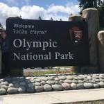 奥林匹克国家公园全攻略