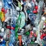 科学界新发现:专吃有毒塑胶的细菌