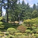北美洲最别致的波特兰日本花园