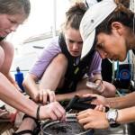 完全由女性组成的海洋保育队
