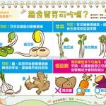 蔬食发芽可吃吗?|营养教室 蔬食篇11