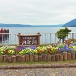 北海道洞爷湖和昭和新山熊牧场