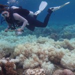 海洋与气候变化之间的关联